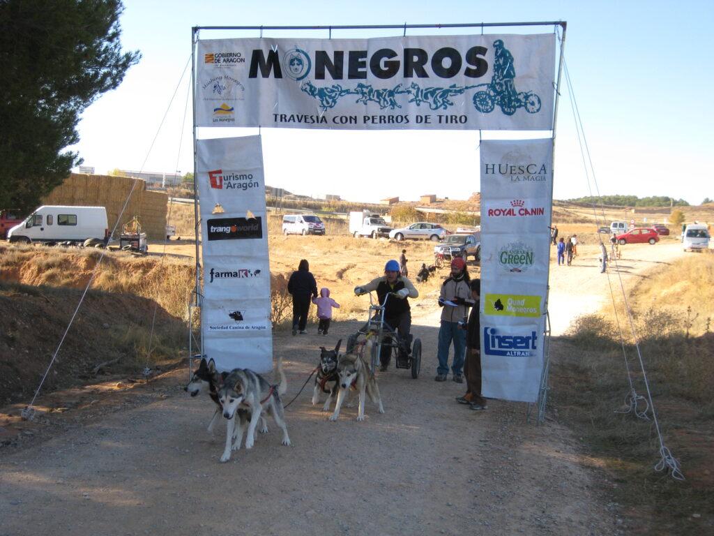2007 Ariza